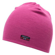 Hiking Beanie 173A HAZE